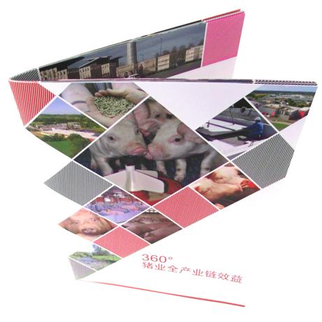 brochure entreprise